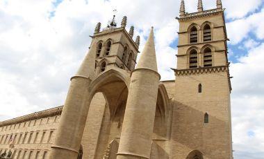 Catedrala Sfantul Pierre din Montpellier