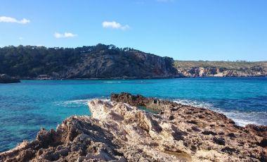 Preeriile Oceanice de Posidonia din Ibiza