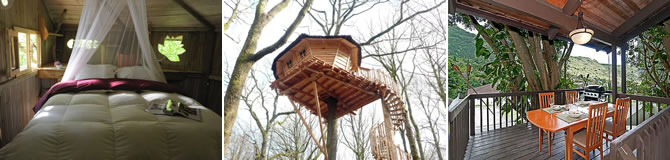 Cabanele Bois Landry Franta si Tree Houses Hawaii