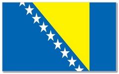 Steagul statului Bosnia si Hertegovina