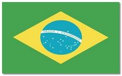 Steagul statului Brazilia