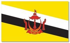 Steagul statului Brunei