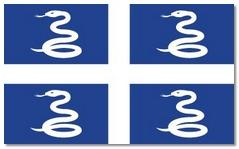 Steagul statului Martinica