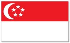 Steagul statului Singapore