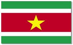 Steagul statului Surinam