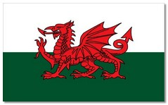 Steagul Tarii Galilor